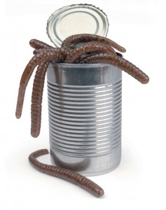 Your can of worms